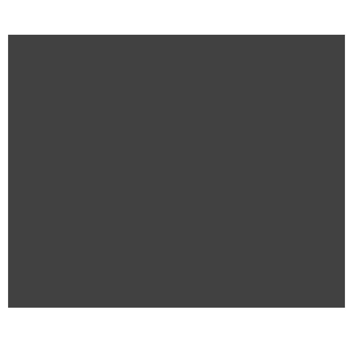 logo-icona